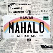 好きな文字にできるアメリカナンバープレート(大・US車用サイズ)ハワイ・レインボー