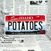 好きな文字にできるアメリカナンバープレート(大・US車用サイズ)アイダホ