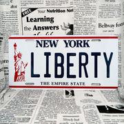 好きな文字にできるアメリカナンバープレート(大・US車用サイズ)ニューヨーク