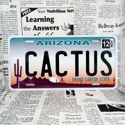 好きな文字にできるアメリカナンバープレート(大・US車用サイズ)アリゾナ