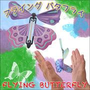 ☆えっ!?本物?!☆蝶々が羽ばたく?!☆彡フライングバタフライ カラーおまかせ◆