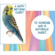 Stockwell Greetings グリーティングカード バースデー インコ×鳥