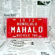好きな文字にできるアメリカナンバープレート(大・US車用サイズ)ハワイ・自転車タグ-赤