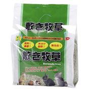 小動物の床敷き材!「敷き牧草 (バミューダ) 約1kg」