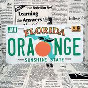 好きな文字にできるアメリカナンバープレート(大・US車用サイズ)フロリダ