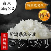 ●※ 幸☆【白米】特別栽培米新潟県魚沼産コシヒカリ5kg×2平成28年度単一原料米04243