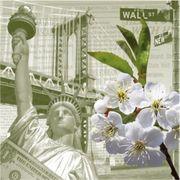 Paw Decor Collection ペーパーナプキン フラワー ニューヨーク 自由の女神