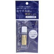 ポイント美容 保湿液H(ヒアルロン酸) 【 ちのしお社 】 【 化粧品 】
