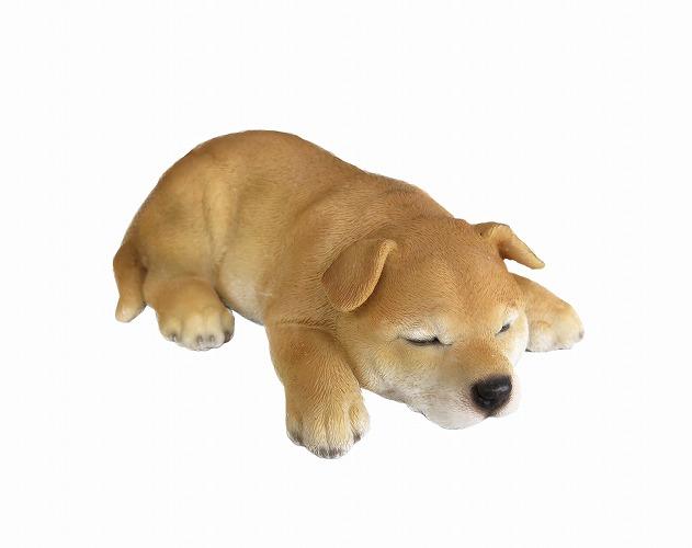 <AMANO>【レジン製イヌ】いねむり 豆柴