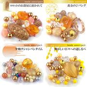 ビーズアソートパック4『Shiny Gold Set』(014・043・015・056)