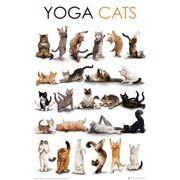 ポスター YOGA cats