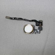 iPhone 5s ホームボタン+ケーブル (ゴールド) 金 アイフォーン Apple 新品