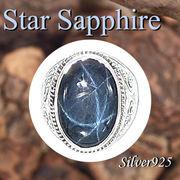大きいサイズ / 09-30-14  ◆ Silver925 シルバー リング スター サファイア 23号